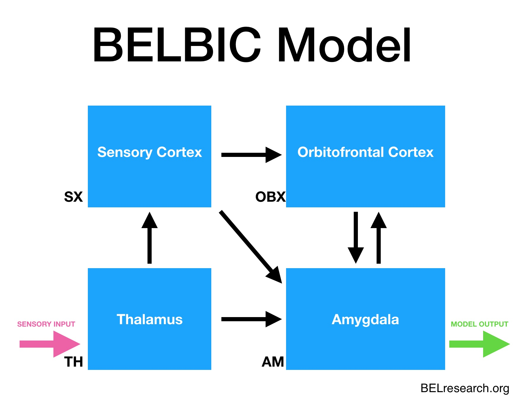 belbic model belresearch